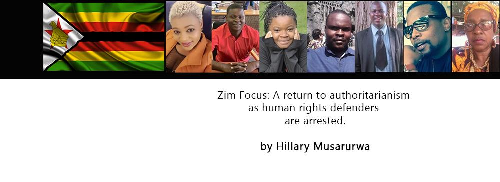 The Zim 7